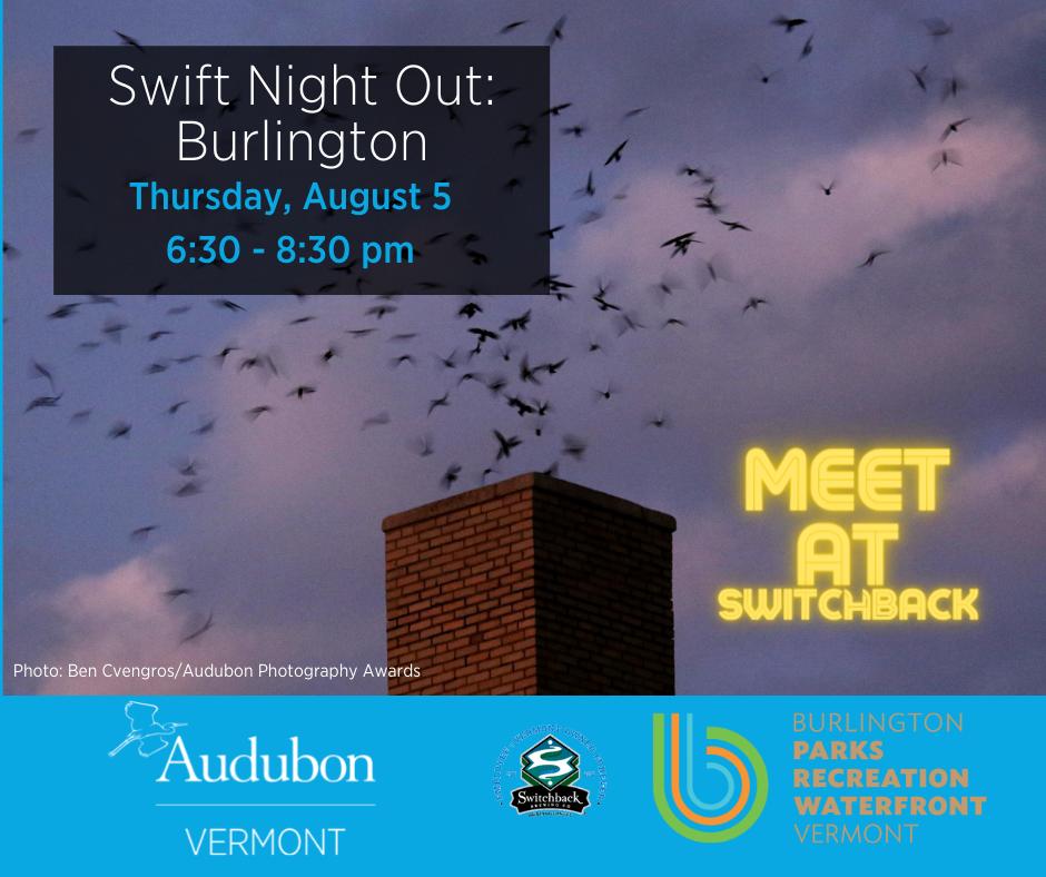 swift night out